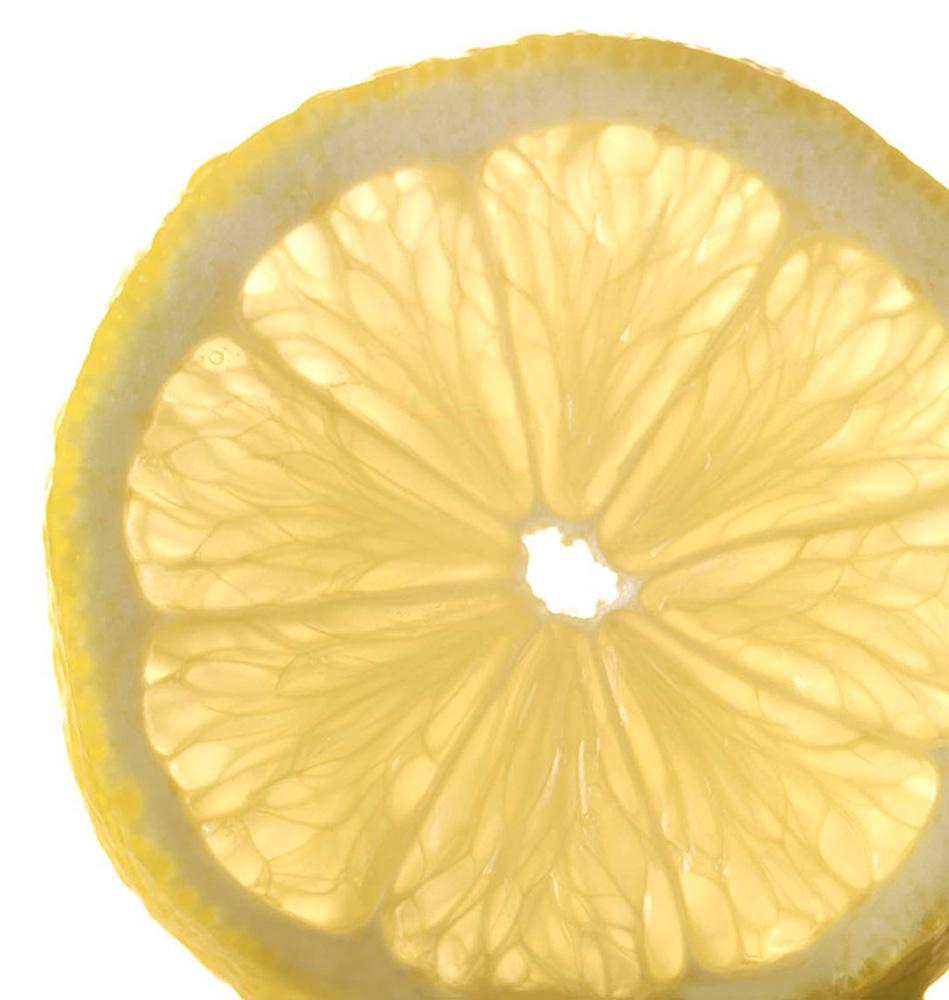 Roes.Zitronenscheibe